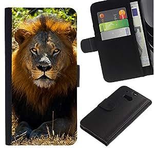 KingStore / Leather Etui en cuir / HTC One M8 / León Verano Mane ?frica Savannah Naturaleza