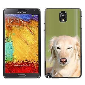 Vortex Accessory Carcasa Protectora Para Samsung Note 3 N9000 N9002 N9005 - Whippet Saluki Big Dog Canine Pet -