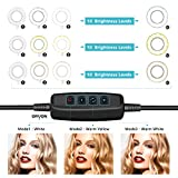 """10.2"""" Selfie Ring Light with Tripod Stand & Cell Phone Holder for Live Stream/Makeup, UBeesize Mini Led Camera Ringlight for YouTube Video/Photography Compatible with iPhone 8 7 6 Plus X 6s SE Android"""
