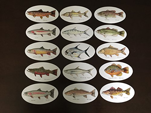 Ultimate Fish Decal Package 15 Decals, Jeff Currier Fish Stickers - Vinyl and Waterproof - Perfect Fishing Gift - Fly Fishing Bumper Sticker, Bass, Trout, Walleye, Tarpon, Bonefish, Permit, Carp