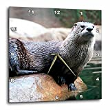 3drose Otter Wall Clock, 10 by 10-Inch For Sale