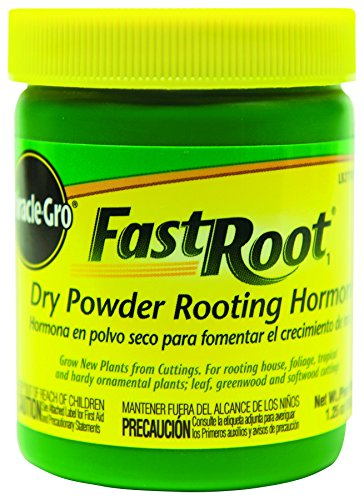 miracle-gro-100645-fast-root-dry-powder-rooting-hormone-jar-12-pack-1-1-4-oz