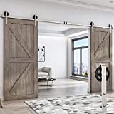 EaseLife 8 FT Heavy Duty Double Sliding Barn Door Hardware Track Kit,Slide Smooth Quiet,Easy Install,One Piece 8FT Track,Big Wheel,Nickle,for Bedroom Parlour Aisle Garage(8FT Track Double Door Kit)