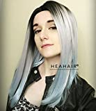Heahair Women Dark Root Grey Lace Wigs Ombre Silver Straight Handtied Synthetic Lace Front Wigs for Cosplay Hs0007