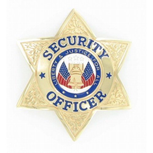 Security Officer 6 point Gold Star Badge - - Security Gold Badge