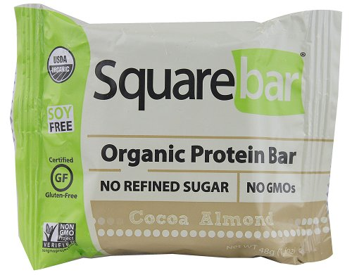 Squarebar Organic Protein Bar, Chocolate Coated Almond Spice, 1.7 Ounce