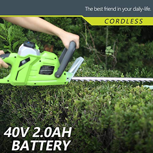 Best High Performance Trimmer,20-Inch,2.0AH Battery Include