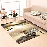 Nalahome Custom carpet opard Resting Under Dramatic Cloudy Sky Africa Safari Wild Cats Nature Picture Print Beige Brown area rugs for Living Dining Room Bedroom Hallway Office Carpet (5' X 7')