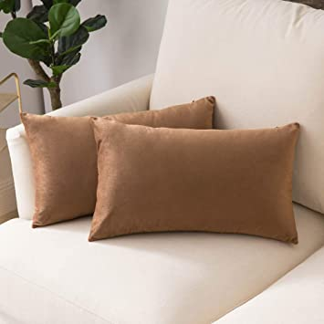 Woaboy Pack of 2 Velvet Throw Pillow Covers Decorative Pillowcases Solid Soft Cushion Covers Pillow Case Square Cojines for Couch Living Room Sofa ...