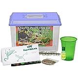 LIVE Dwarf Frog Kit SHIPPED WITH 1 Aquatic Dwarf Frog Now