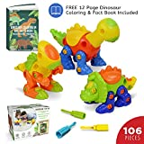 Ivy Step Dinosaur Toy with 3 Screw Drivers and Coloring Booklet STEM Dinosaur Toys for Educational Learning, Boys & Girls 3-6 Years