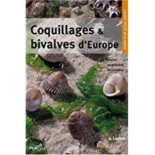 Coquillages & bivalves d'Europe