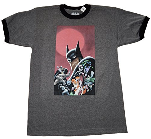 Batman Batman's World Adult Sized T-shirt (Small) (Catwoman From The Dark Knight Rises)