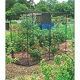Amazon Com Gardman 7662 Fruit Cage Large 118 Quot Long X 78