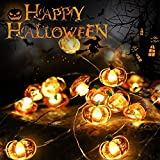 Thanksgiving Decoration Light String, ZALALOVA 13.12 ft 40 LEDs 8 Modes Pumpkin String Lights Copper Wire Battery Operated with Remote Timer for Thanksgiving Decoration Christmas (Warm White)
