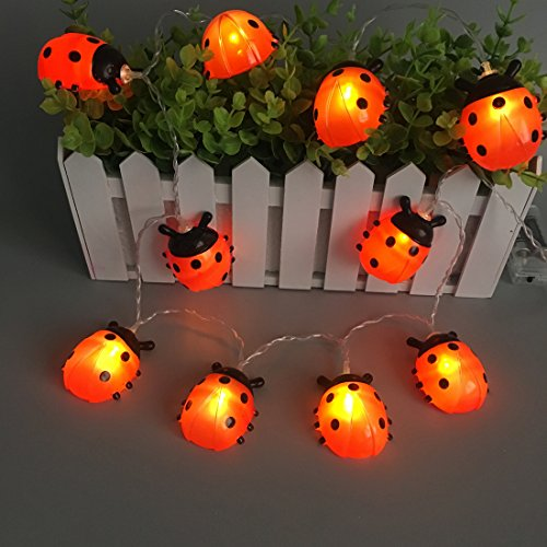 Ladybugs Fairy String Lights 10 Plastic Red LEDs 5.5ft Copper Wire Best Decoration Lights For Christmas Decoration ,House,Room.(Warm White) (Ladybug Lights)