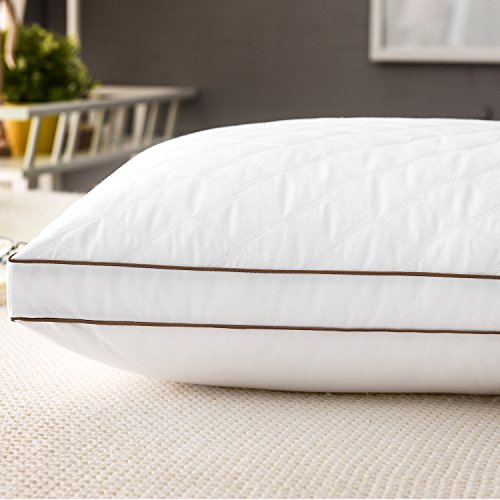 Casaottima Standard Bed Pillow, Soft & Comfortable Pillows, Better Sleeping Hotel Pillows, Antibacterial & Anti-mite Pillow, 1 Pack