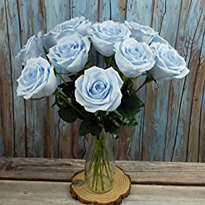 Baby Blue Paper Rose Unique Anniversary Gift For Her Handmade Crepe Paper Flowers for Valentine Birthday Mother Day, Single Long Stem Real Looking, 01 Flower 4