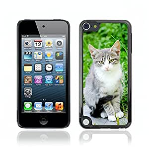 Super Stellar Slim PC Hard Case Cover Skin Armor Shell Protection // V0000927 Cat Kitty Animal Pattern // Apple Ipod Touch 5 5G 5th
