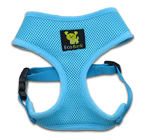 Buy harness for puppy