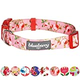 Blueberry Pet 8 Patterns Spring Scent Inspired Floral Rose Baby Pink Dog Collar, X-Small, Neck 7.5''-10'', Adjustable Collars for Dogs