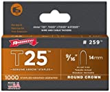 Arrow Staples Rnd Crwn 1/4'', 9/16'' 1000 / Peg Pack - Pack of 5