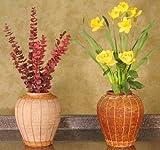 Shopping The Globe Thai Pottery Rattan Vase, 11 inch - Rust