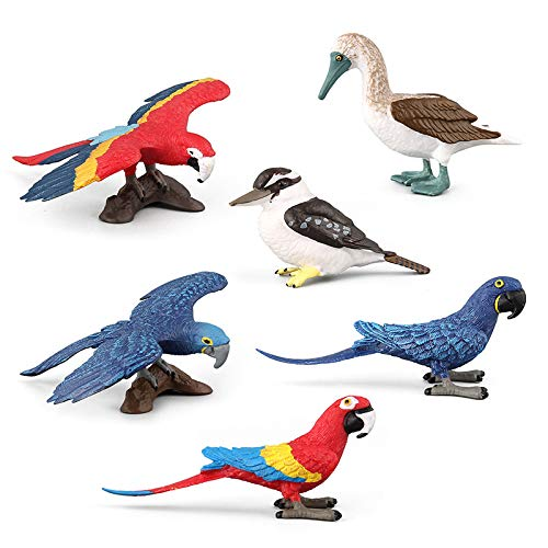 - Warmtree Simulated Macaws Kingfisher Blue-Footed Booby Model Realistic Plastic Parrot Figurines Bird Action Figure for Kids' Collection Science Educational Toy, Set of 6