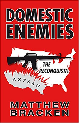 book cover of Domestic Enemies