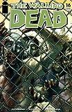 """Walking Dead #16 """"1st Print"""""""