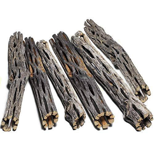 (SunGrow Natural Cholla Wood - 6 Pieces, 5 inches Long - Aquarium Decoration & Chew Toys for Small Pets - Artistic Home-Decor - 100% Natural & pet Safe - Fertilizer Free - Long Lasting Driftwood)