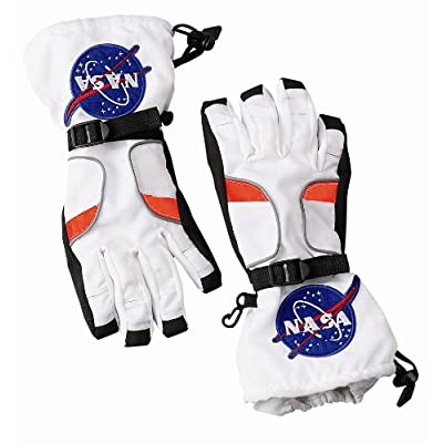 Aeromax Astronaut Gloves, size Small, White, with NASA patches: Clothing