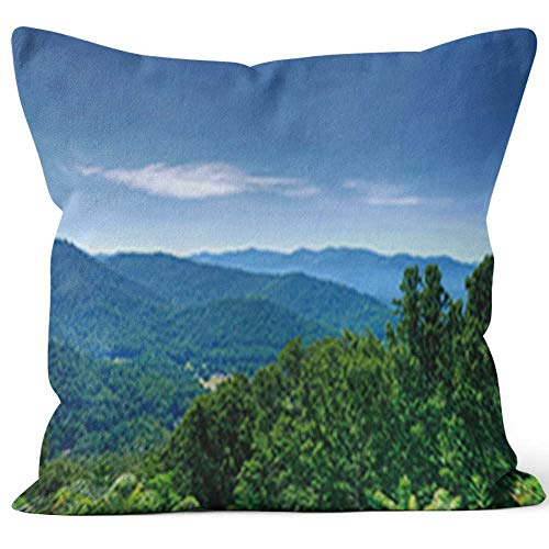Nine City Lush Green Trees on The Blue Ridge Mountains Throw Pillow Cushion Cover,HD Printing Decorative Square Accent Pillow Case,28