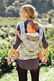 ERGObaby Organic Baby Carrier w/ Petunia Pickle Bottom Fabric – Peaceful Portofino, Baby & Kids Zone