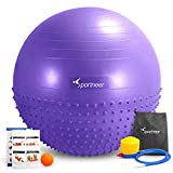 Sportneer Excercise Ball Anti-burst Dual-sided Balance Yoga Ball with Foot Pump,Massage Ball,Workout Guide and Carrying Bag, Purpler, 65cm
