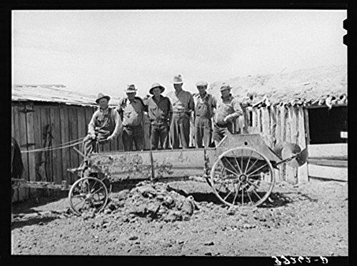 Box Elder County, Utah. Members of the FSA (Farm Security Administration) cooperative manure spreader ()