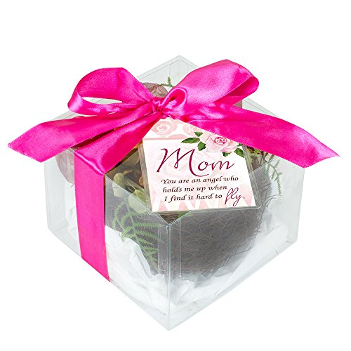 Mom Holds Me Up Hard to Fly Gift Boxed Floral Bird Nest with Eggs Home Décor Accent
