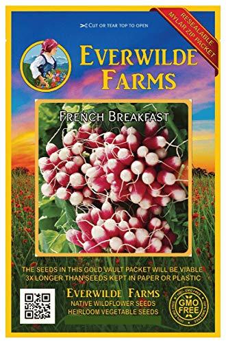 Everwilde Farms - 500 French Breakfast Radish Seeds - Gold Vault Jumbo Seed Packet