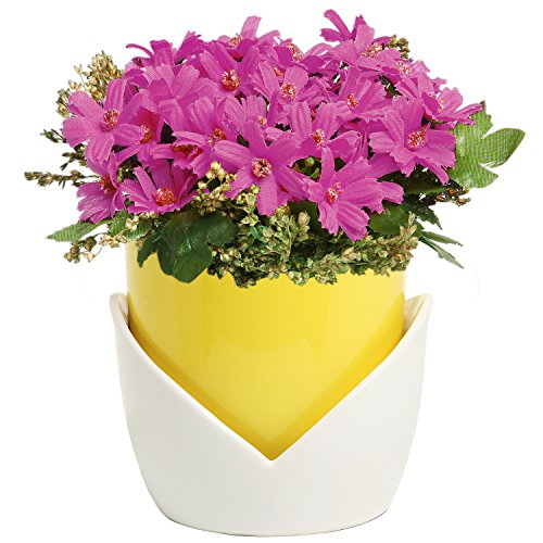 Pots Flower Nesting (Decorative Yellow & White Nesting Design Ceramic Flower Planter Pot / Plant Container w/ Attached Saucer)