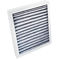 Hamilton Beach True AirTM replacement filter
