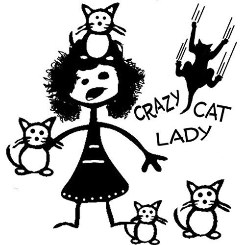 Stick Figure Cat - Crazy Cat Lady Stick Figure Family Decal can be Applied to Any Surface Funny Vinyl Decal Sticker White in Color No Inks 100% Vinyl 8.5