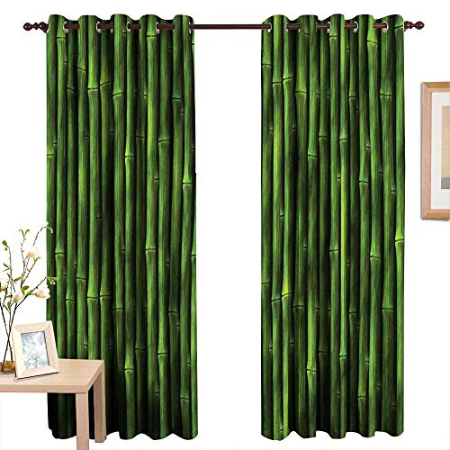 """Qenuanmpo Pattern Curtains Bamboo,Bamboo Stems Pattern Tropical Nature Inspired Background Print Asian Wildlife Zen Decor,Green,Living Room and Bedroom Multicolor Printed Curtain Sets 84""""x84"""""""
