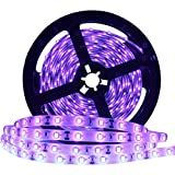 YGS-Tech 24 Watts UV Black Light LED Strip, 16.4FT/5M 3528 300LEDs 395nm-405nm Non-Waterproof Blacklight Night Fishing Sterilization implicitly Party with 12V 2A Power Supply