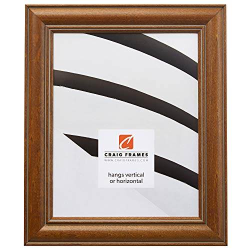 Craig Frames 59928000 12 by 16-Inch Picture Frame, Wood Grain Finish, 1.5-Inch Wide, Light Pecan Brown ()