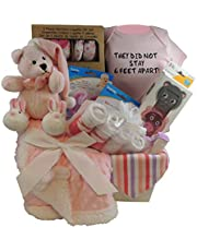 Baby Girl Gift Basket: They Did Not Stay 6 Feet Apart. Pink Bear, Sherpa Blanket. 3pc Snack Containers, 3pc Layette Gift Set and more