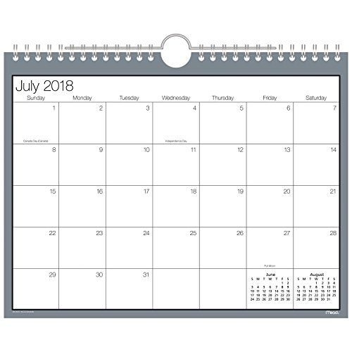 - Mead 2018-2019 Academic Year Wall Calendar, Small, 8-1/2 x 11, Wirebound, Basic, Color Will Vary (CAM20210)