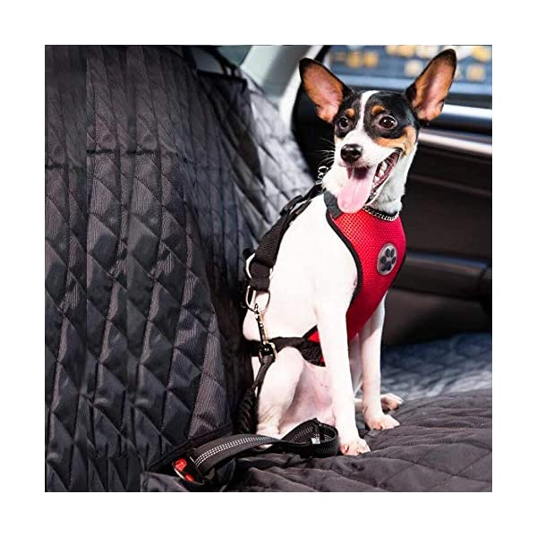 Slowton Dog Car Harness Plus Connector Strap, Multifunction Adjustable Vest Harness Double Breathable Mesh Fabric Car… Click on image for further info. 3