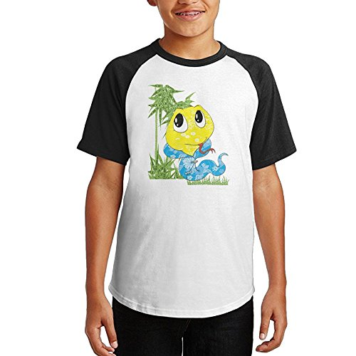 Leisure Snake Unisex Youth Teenager Raglan Tshirts Black XL