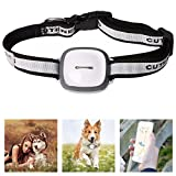LUCOG GPS Dog tracker, Real Time Tracking Your Pet Safe Fence Instant Location Change Alert Notifications, Smart LED Lights Waterproof, Free Apps for iPhone & Android