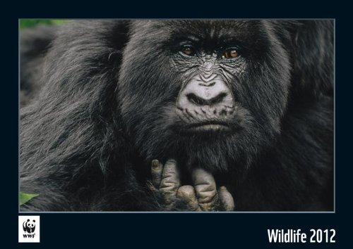 WWF Wandkalender Wildlife 2012